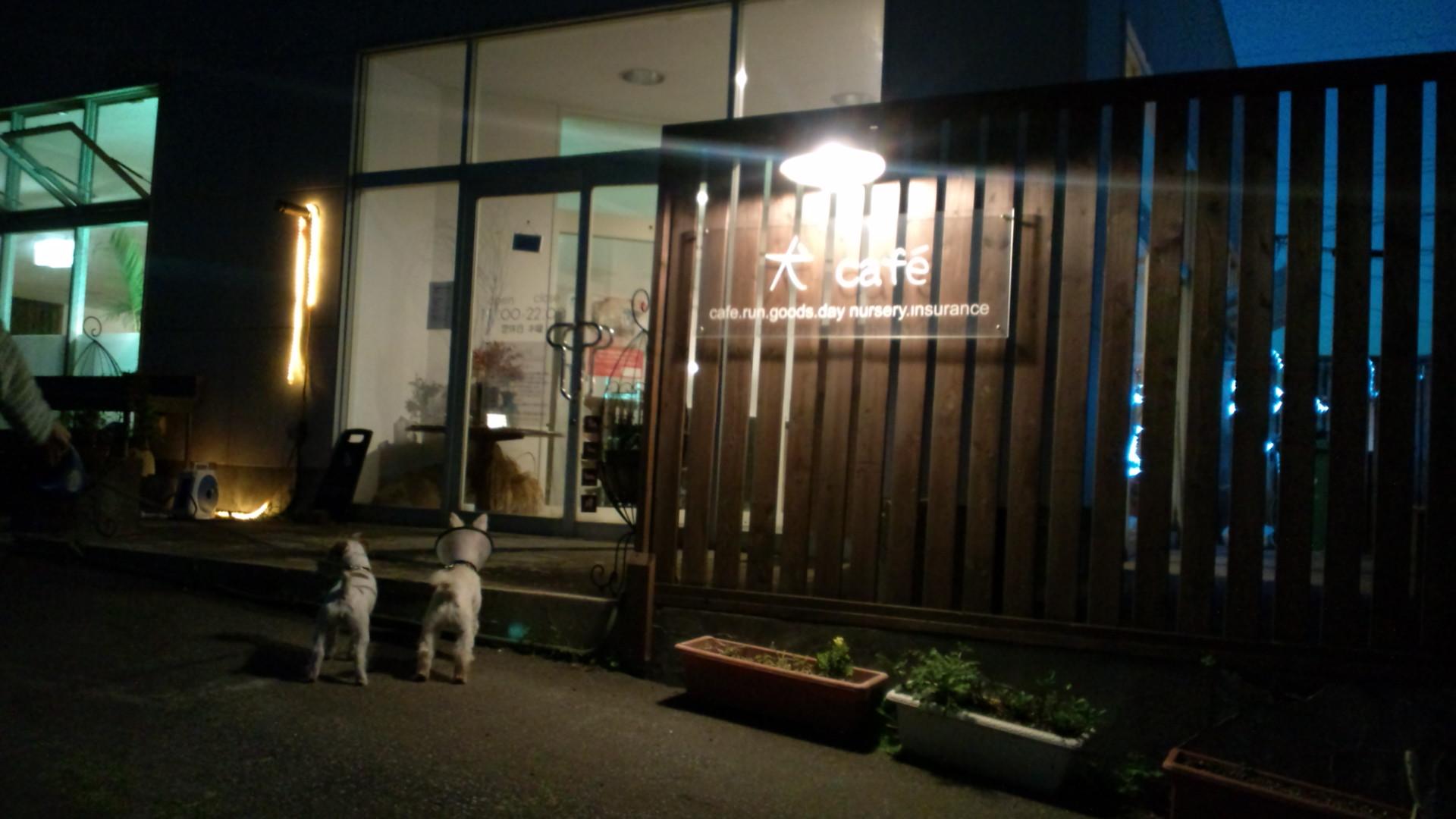 犬Cafeさん